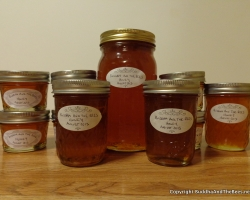 Honey from the hive