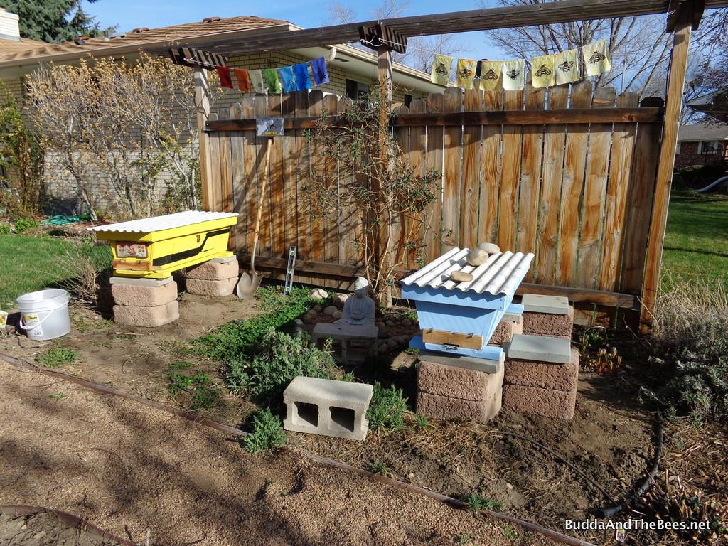 Rearranging the bee yard