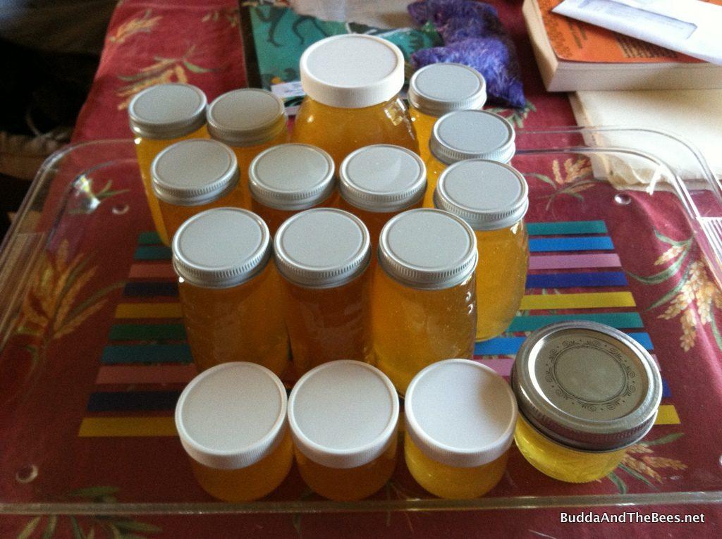 Honey Harvest #1 - BnB2